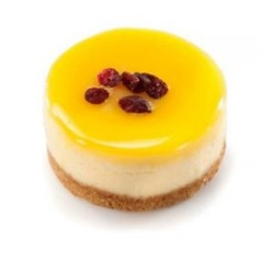 NEW YORK CHEESE CAKE FREE STYLE